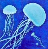 sea-jellies_medium